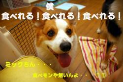 07.08.01blog3.jpg
