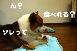 07.08.06blog3.jpg