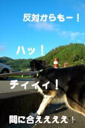 07.08.15blog2.jpg