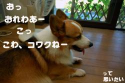 07.08.21blog2.jpg