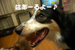 07.08.24blog1.jpg