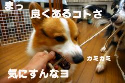 07.08.29blog1.jpg