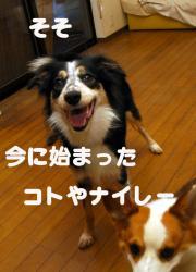 07.08.29blog2.jpg