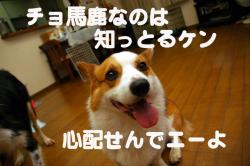 07.08.29blog3.jpg