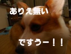 07.08.2blog2.jpg