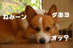 07.09.01blog2.jpg