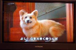 07.09.16blog3.jpg