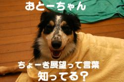 07.09.24blog6.jpg