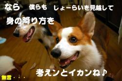 07.09.25blog2.jpg