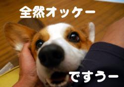 07.09.26blog2.jpg