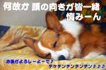 07.1.13blog4.jpg