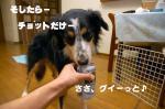 07.1.2blog2.jpg