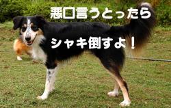 07.10.02blog.jpg