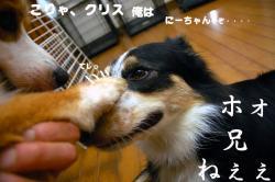 07.10.03blog.jpg