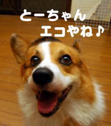 07.10.04blog2.jpg