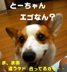 07.10.04blog3.jpg