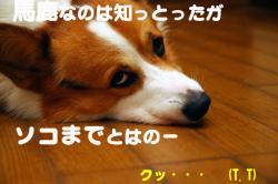 07.10.08blog.jpg