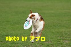 07.10.24blog2.jpg