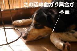 07.11.09blog.jpg