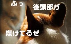 07.11.19blog2.jpg