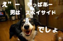 07.11.20blog2.jpg