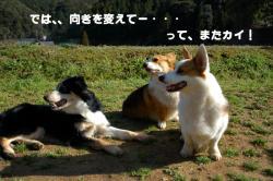 07.3.11blog2.jpg