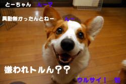 07.3.26blog2.jpg