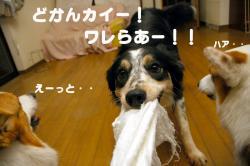 07.3.28blog.jpg