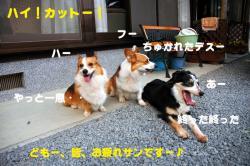 07.3.31blog2.jpg
