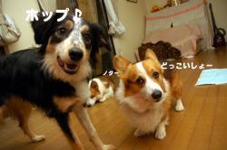 07.3.6blog1.jpg