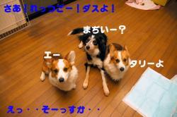 07.3.8blog.jpg