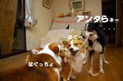 07.4.11blog1.jpg