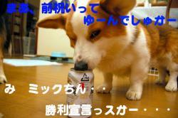 07.4.12blog.jpg