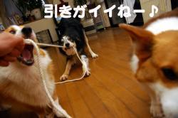 07.4.27blog3.jpg