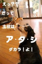 07.4.30blog4.jpg
