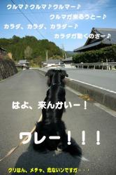 07.4.7blog4.jpg