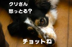 07.5.6blog4.jpg
