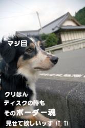 07.6.12blog.jpg