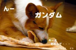 07.6.21blog2.jpg