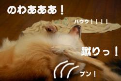 07.6.24blog2.jpg