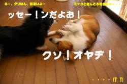 07.7.02blog.jpg