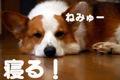 080102blog2.jpg