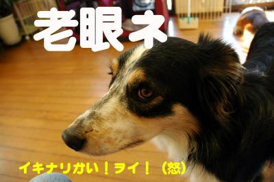 080107blog1.jpg