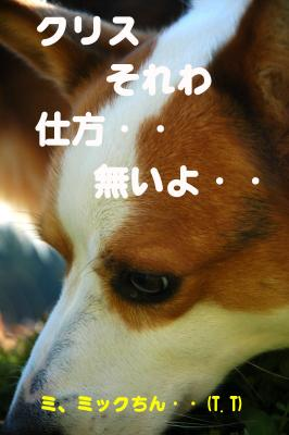 080107blog2.jpg