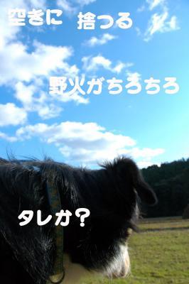 080113blog3.jpg
