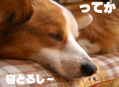 080307blog2.jpg