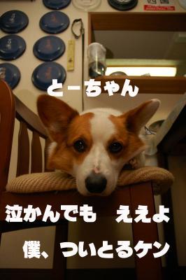 080310blog1.jpg
