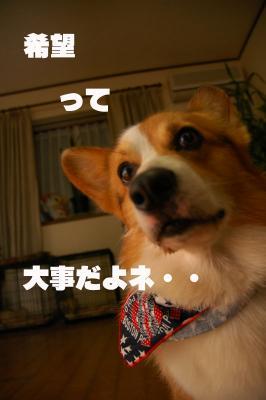 080310blog2.jpg