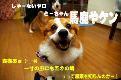 080318blog.jpg