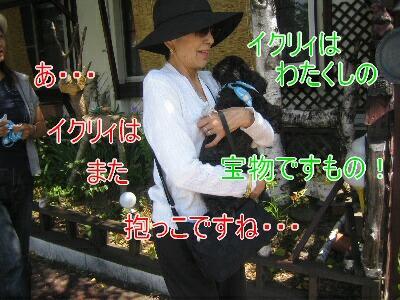 20080811q.jpg